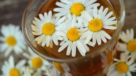 Otthoni gyógymódok a hasmenésre